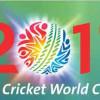ICC Cricket World Cup 2011 Statistics