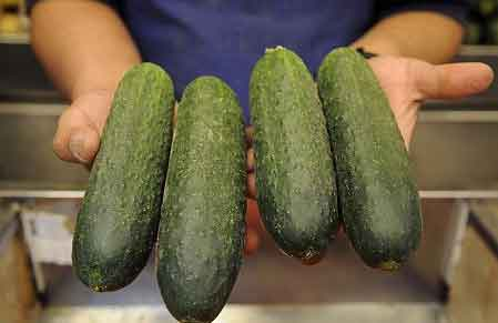 Girls Cucumber sexual thoughts