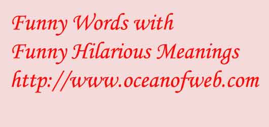 Funny words with meanings