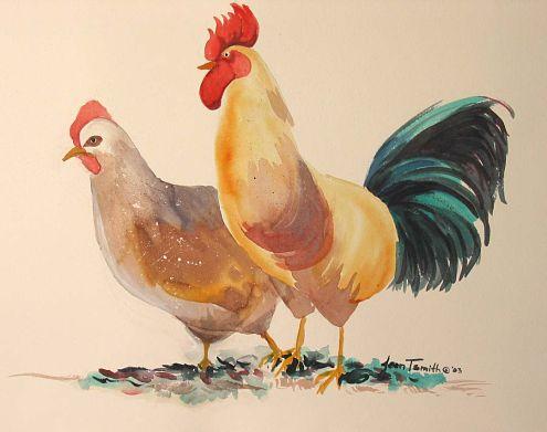 chicken2_opt