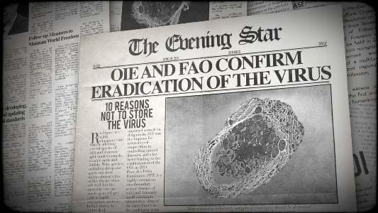 rinderpest virus disease