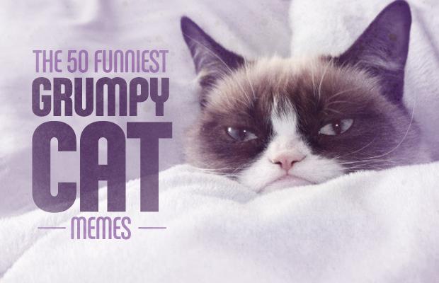 grumpy_catmemes
